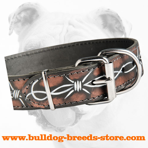 Nickel Plated Buckle on Barbed Wire Leather Bulldog Collar