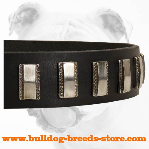 Plated Genuine Leather Dog Collar for Bulldog