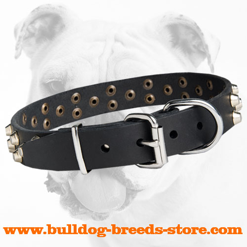 Strong Leather Dog Collar of a Fancy Design for Bulldog