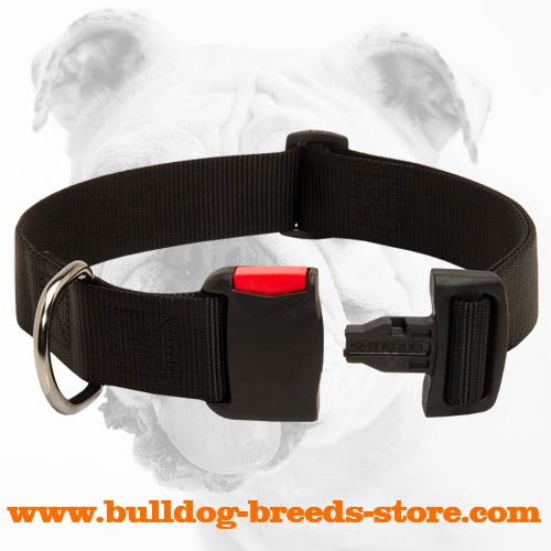 Durable Walking Nylon Bulldog Collar