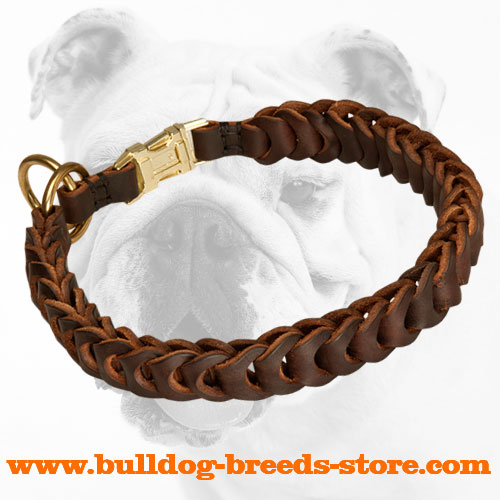 Training Braided Leather Bulldog Choke Collar