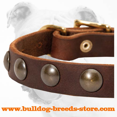 Half Balls on Durable Adjustable Walking Leather Dog Collar for Bulldog