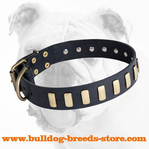 Durable Adjustable Walking Leather Dog Collar with Plates for Bulldog