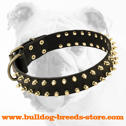 Brass Spiked Adjustable Leather Bulldog Collar