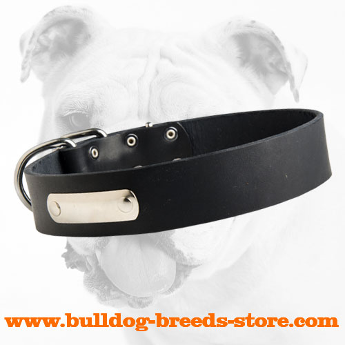 Adjustable Leather Dog Collar for Bulldog with Name Tag