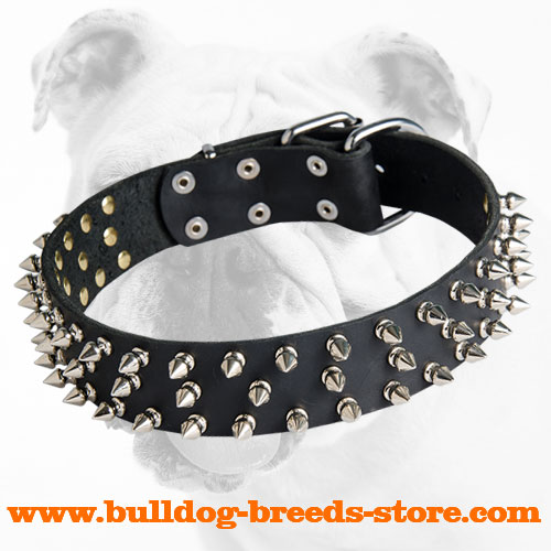 Durable Spiked Leather Dog Collar for Bulldog Breeds