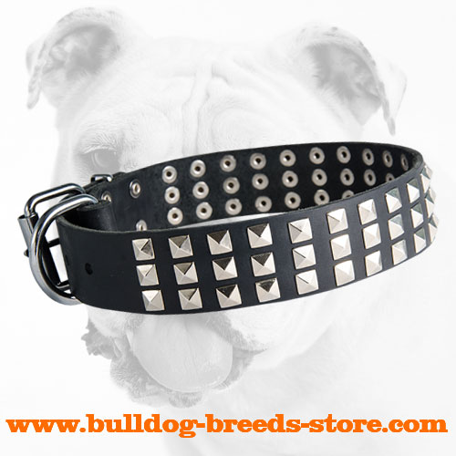 Fabulous Leather Bulldog Collar with Pyramids
