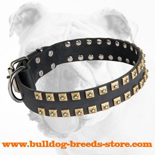 Training Designer Leather Dog Collar with Studs for Bulldog