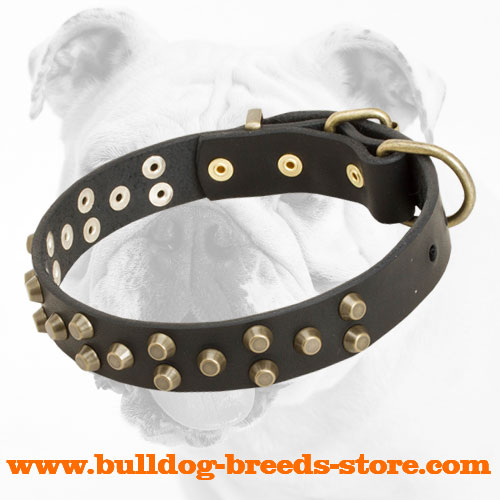 Durable Designer Training Leather Bulldog Collar with Studs