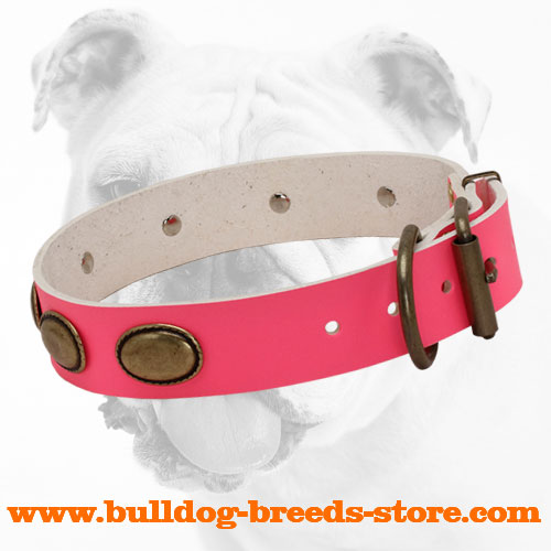 Training Designer Pink Leather Dog Collar for Bulldog with Brass Buckle