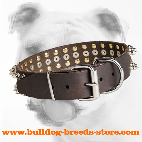 Fashion Training Leather Bulldog Collar with Rust Proof Buckle