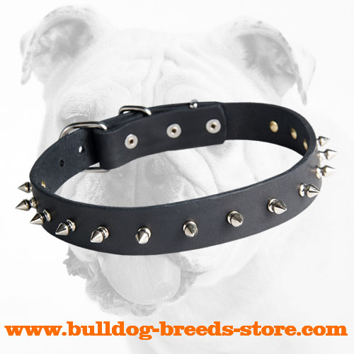 Stylish Handling Spiked Leather Dog Collar for Bulldog