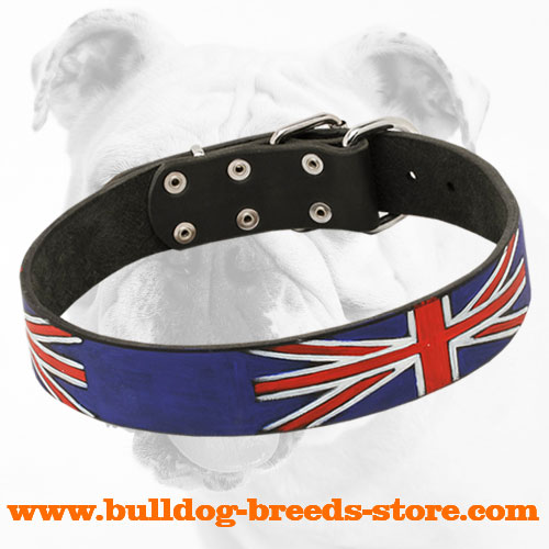 Extraordinary Painted Leather Bulldog Collar for Walking