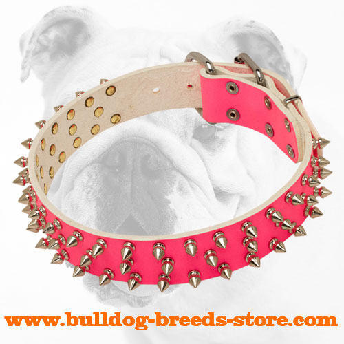 Pink Adjustable Designer Leather Bulldog Collar