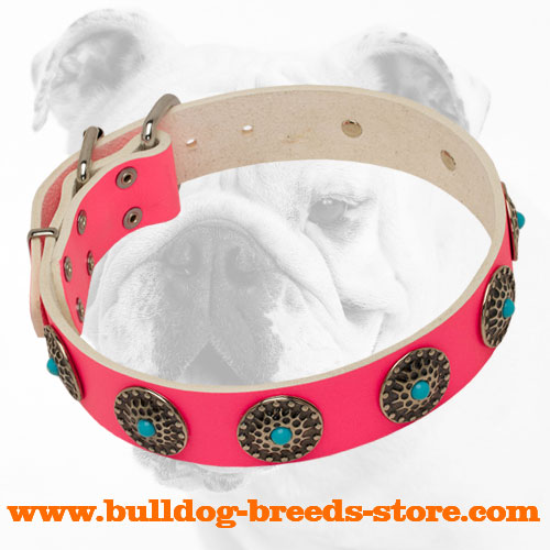 Fancy Pink Designer Training Leather Bulldog Collar