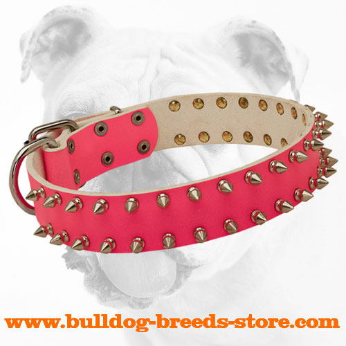 Designer Stylish Pink Spiked Leather Bulldog Collar