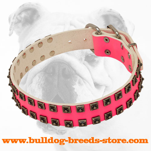 Stylish Studded Pink Walking Leather Bulldog Collar