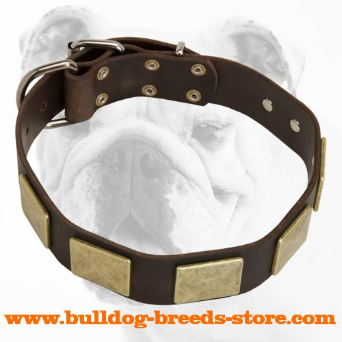Safe and Comfortable Collar