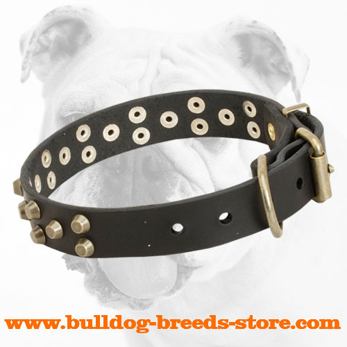 Sophisticated Studded Leather Bulldog Collar with Rust Resistant Hardware