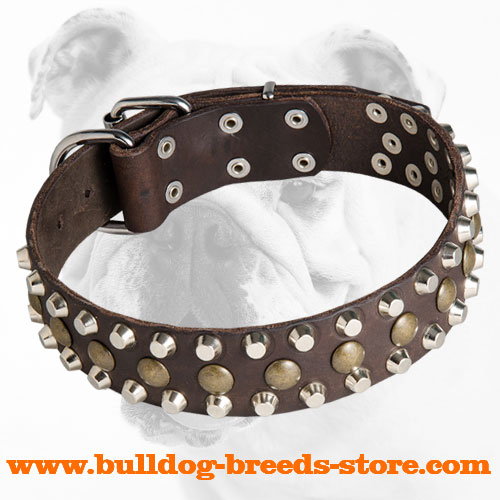 Designer Studded Leather Bulldog Collar for Regular Training