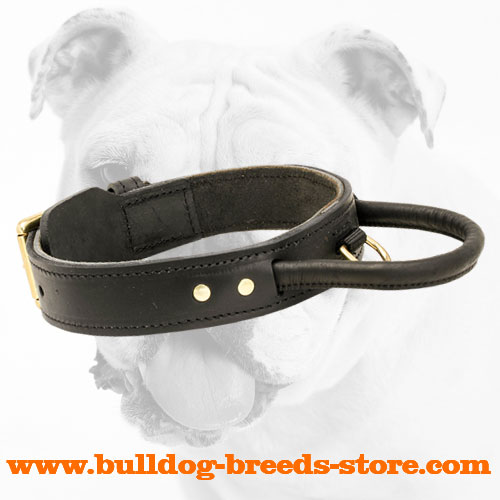 Obedience Training Leather Bulldog Collar with Handle