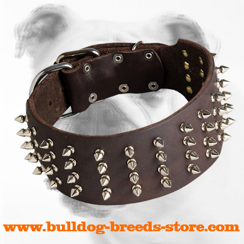 Designer Wide Spiked Leather Bulldog Collar for Walking