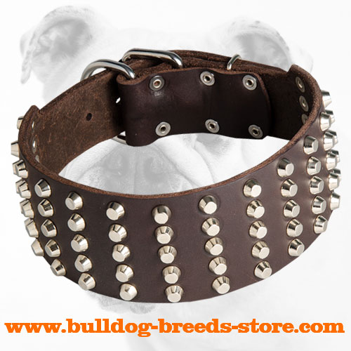 Wide Studded Walking Leather Bulldog Collar