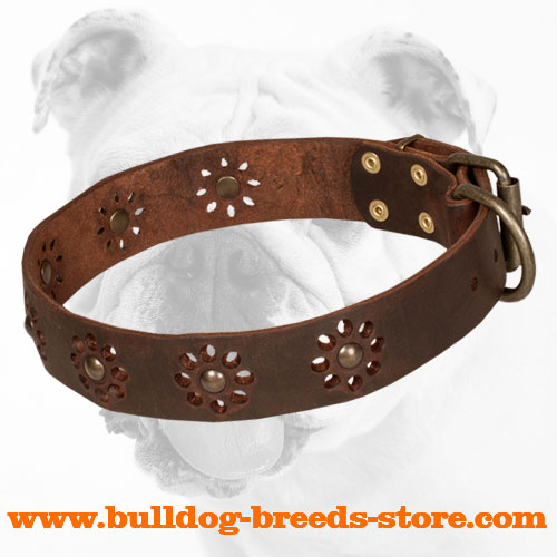 Designer Walking Brown Leather Bulldog Collar with Flower Decor