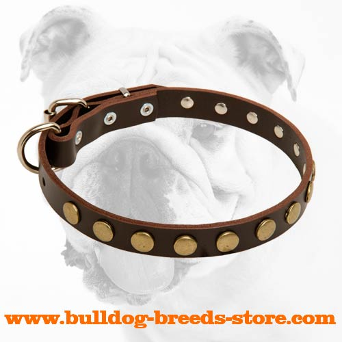 Durable Fashionable Adjustable Walking Leather Dog Collar for Bulldog with Circles