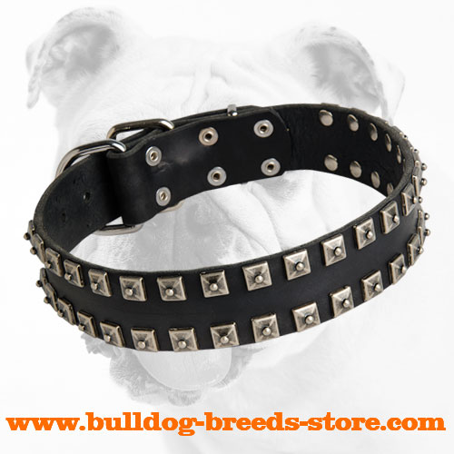Walking Studded Leather Bulldog Collar