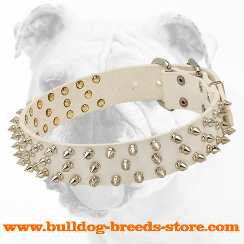 White Leather Bulldog Collar with Three Rows of Shiny Spikes
