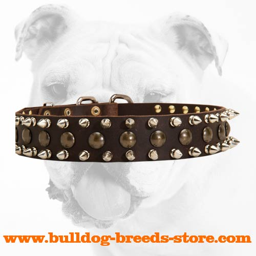 Strong Extra Wide Training Leather Bulldog Collar