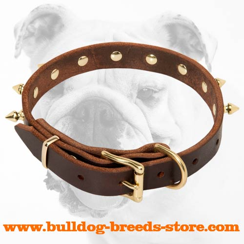 Adjustable Training Leather Bulldog Collar with Durable Buckle