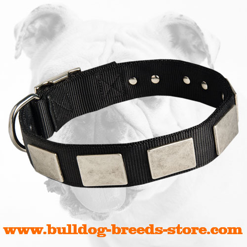 Training Nylon Dog Collar for Bulldog with Nickel Plates