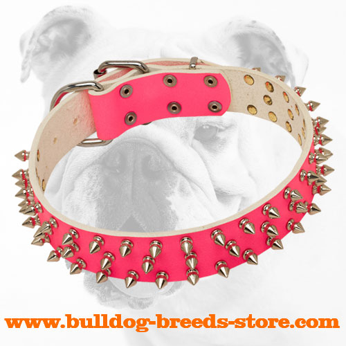 Pink Walking Spiked Leather Bulldog Collar