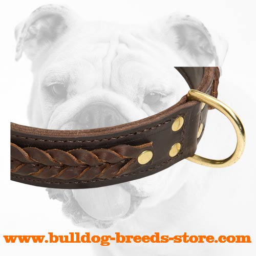 Braided Walking Leather Bulldog Collar with D-ring