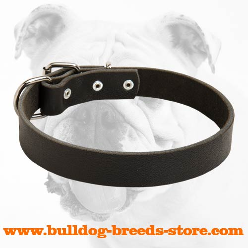 Comfortable Walking Leather Bulldog Collar
