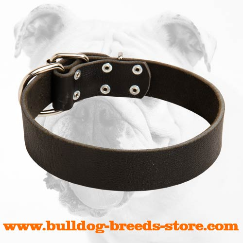 Adjustable Leather Bulldog Collar for Training