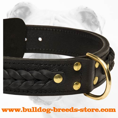 Training Braided Leather Bulldog Collar with Brass D-Ring