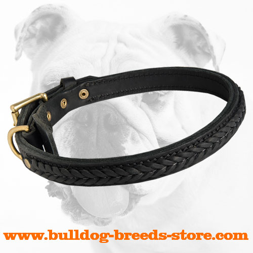 Practical Leather Bulldog Collar with Brass D-Ring