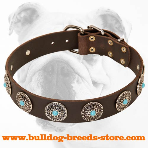 Stylish Walking Leather Bulldog Collar with Blue Stones