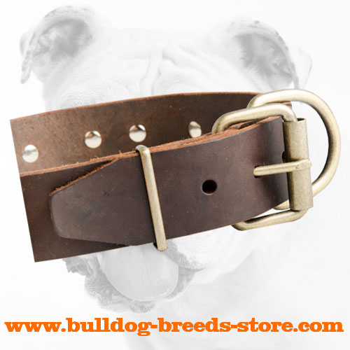 Brass Buckle of Strong Adjustable Leather Bulldog Collar