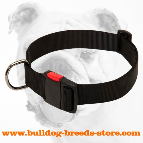 High Quality Nylon Bulldog Collar