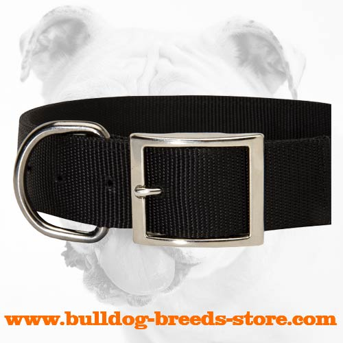Nickel Plated Buckle of All Weather Walking Nylon Bulldog Collar