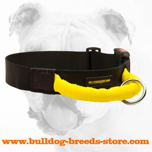 Training Nylon Bulldog Collar with Handle