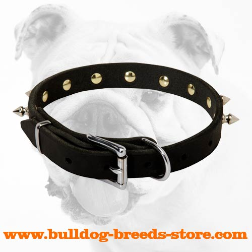 Walking Spiked Leather Bulldog Collar with Reliable Buckle
