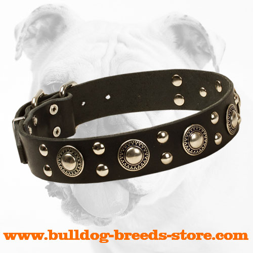 Elegant Leather Bulldog Collar