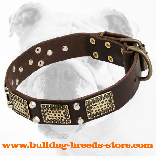 Elegant Leather Bulldog Collar with Trendy Decorations