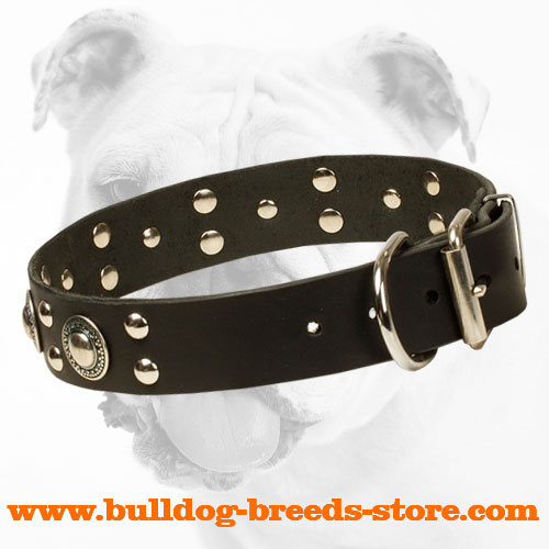 Practical Leather Bulldog Collar with a Strong Hardware