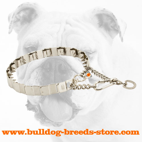 Practical Rust Proof Stainless Steel Dog Neck Tech Collar for Bulldogs for Training Sessions